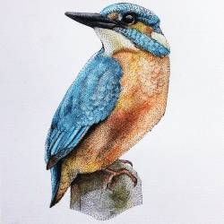 Kingfisher | Colored drawing made of dots